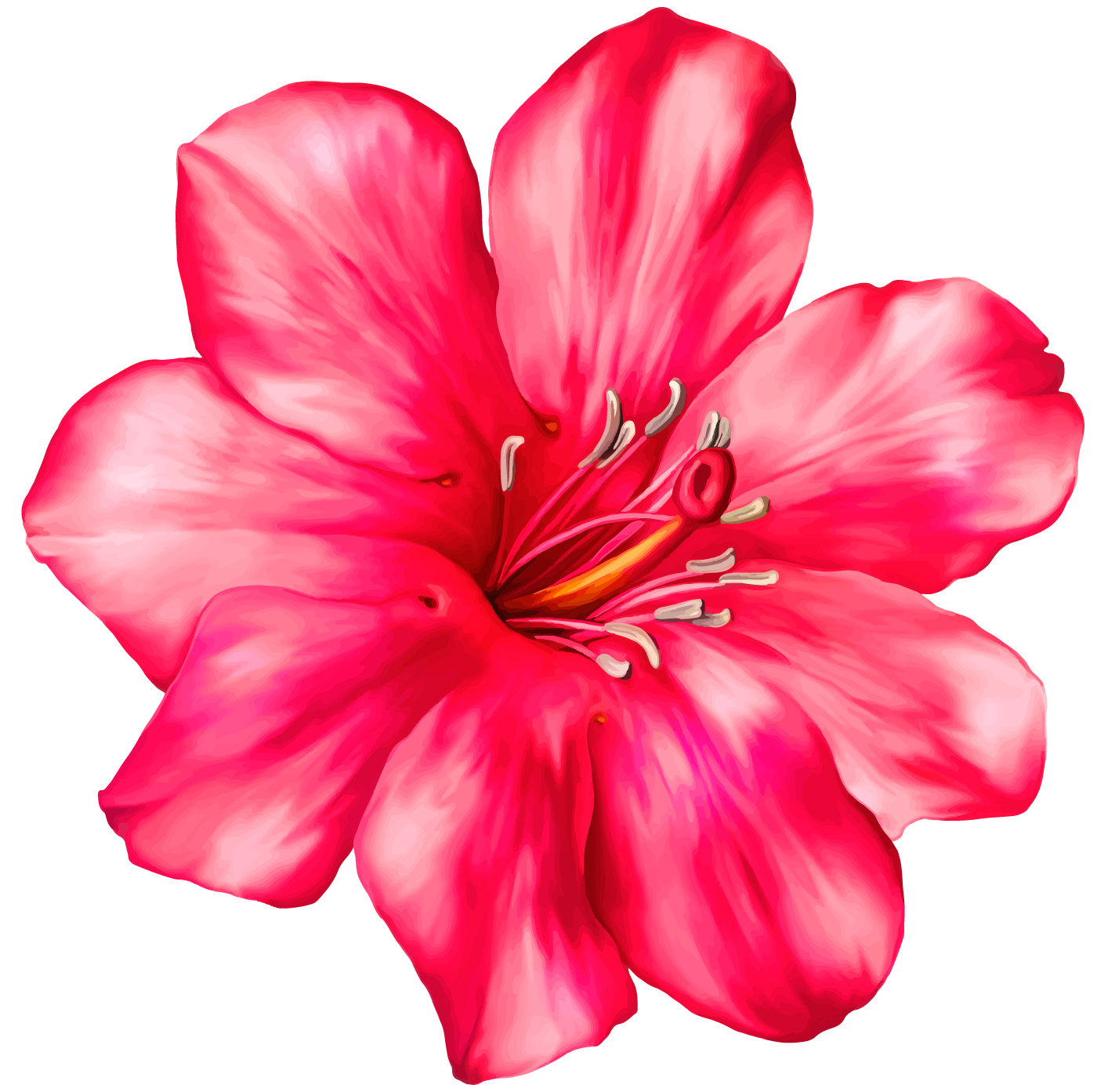 Exotic Pink Flower PNG Clipart Picture.