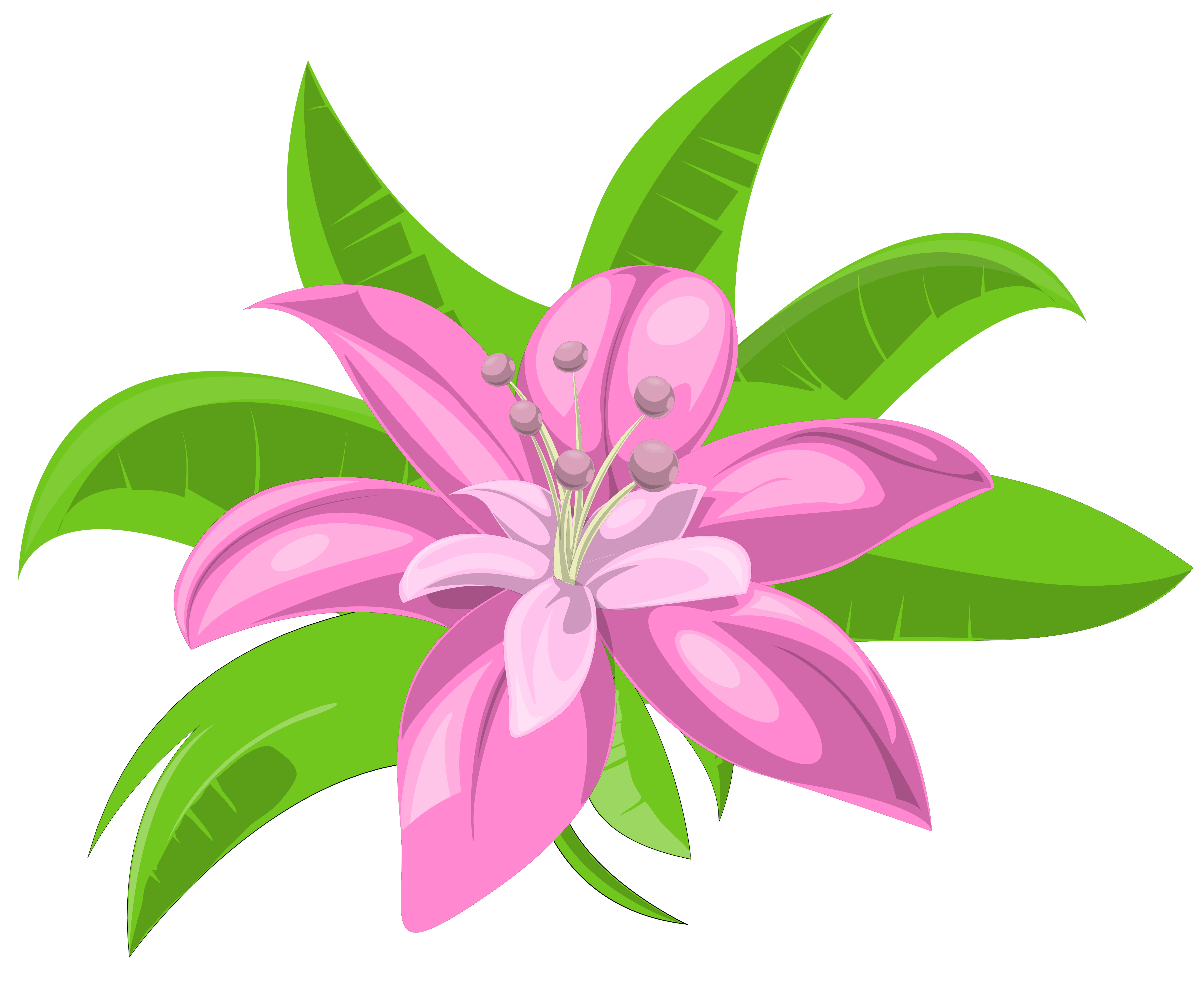 Pink Exotic Flower PNG Image.