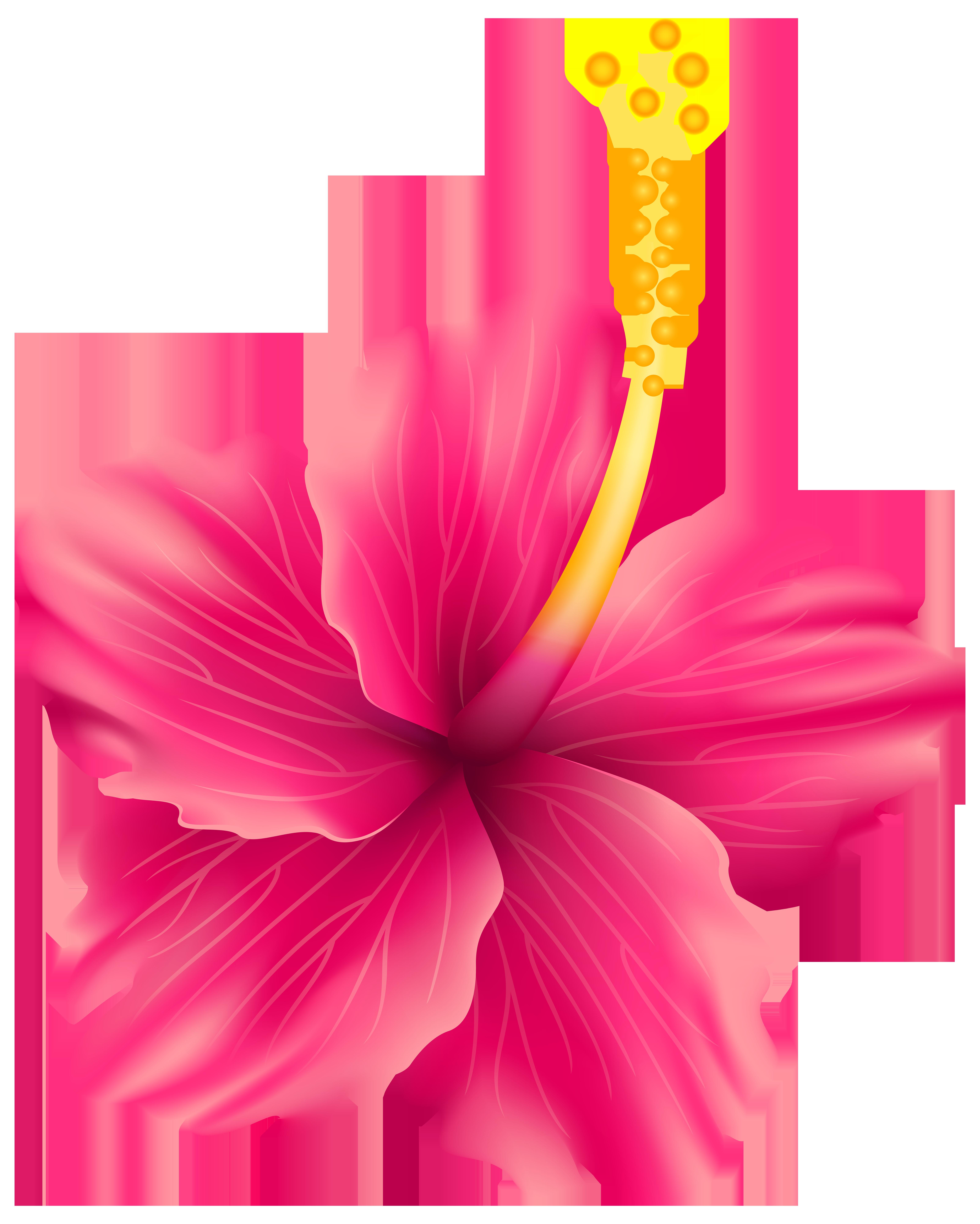 Pink Exotic Flower PNG Transparent Clip Art Image.