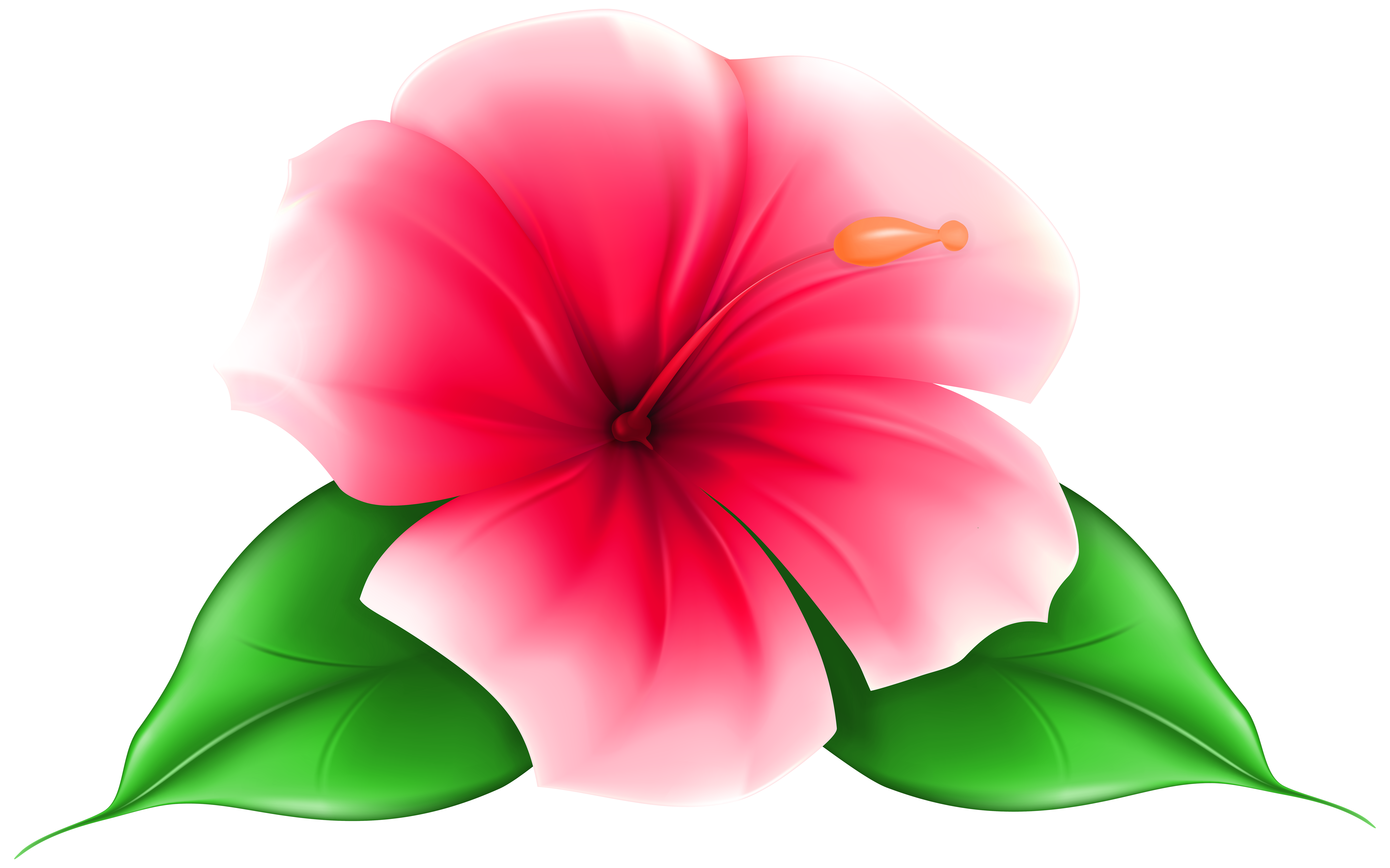 Exotic Flower PNG Clip Art Image.