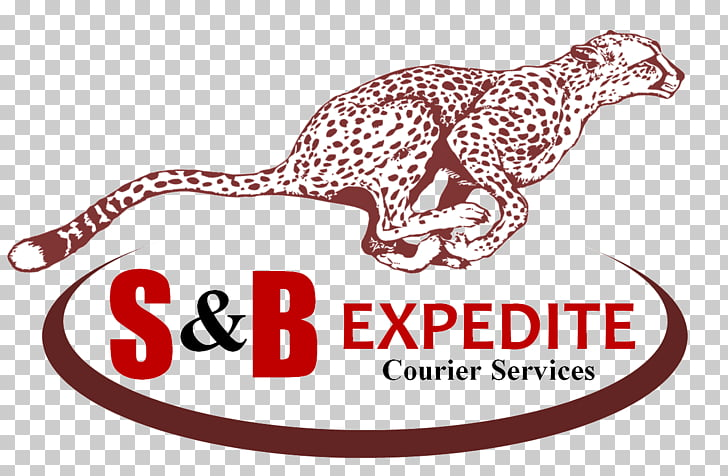 S&B Expedite Courier Delivery Brand Customer, world courier.