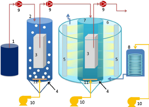 The experimental setup of the sequential photocatalytic.