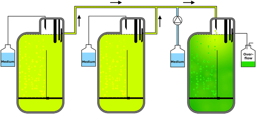Schematic overview of the experimental setup with two reactors.