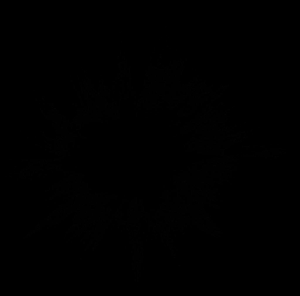 6 Grunge Explosion (PNG Transparent).