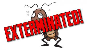 Residential Pest Control & Bark Beetle Infestation.