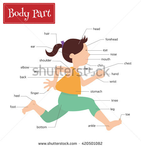 Child Forehead Stock Vectors, Images & Vector Art.