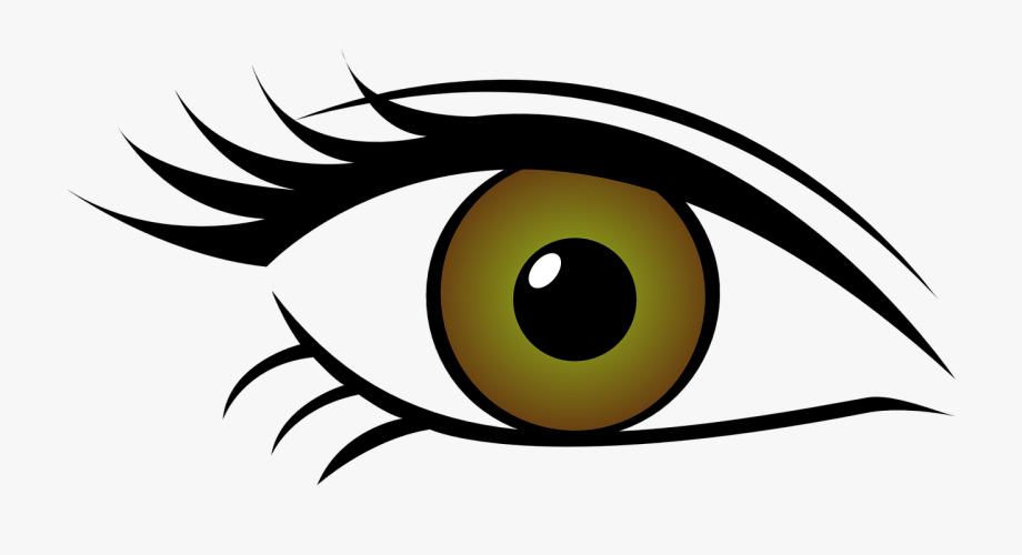 Green Eyes Clipart Horse Eye.