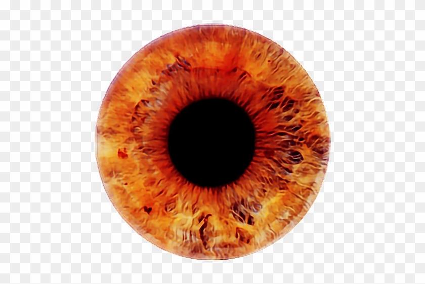 Eye , #eyes , #eyeball , #eyeballs.