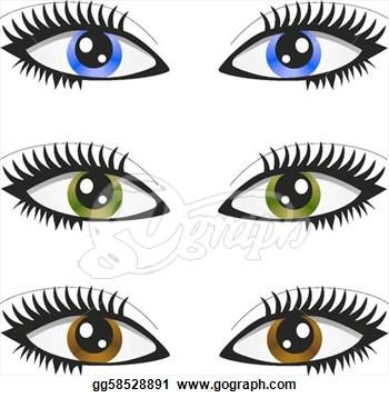 Hazel eye color clipart.