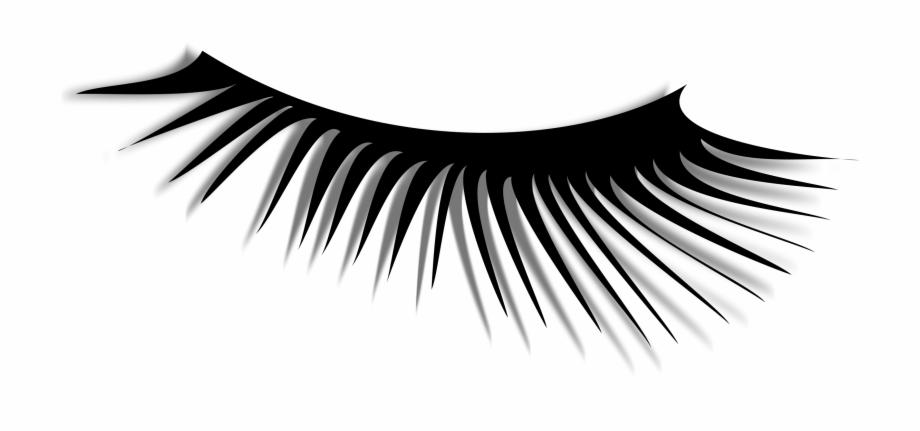 Eye Lash Images.