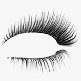 Eyelashes Png Clear Background.