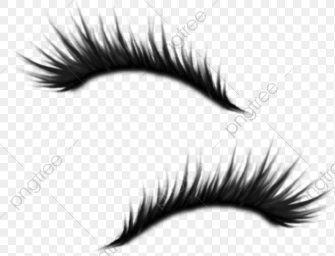 Amy Eyelashes, Eyelash, Beautiful, Pretty PNG Transparent Image and.