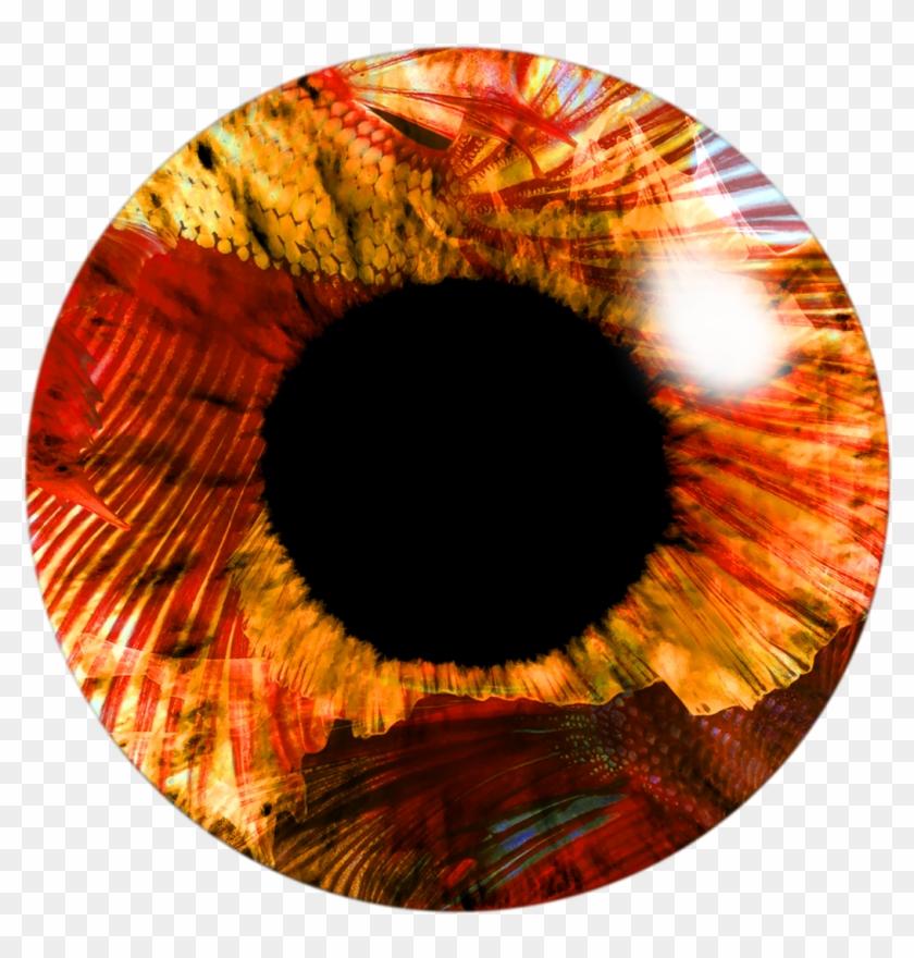Eye Lenses Png By Me.