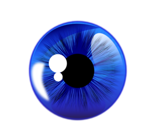 Blue Eye White Back Clip Art at Clker.com.