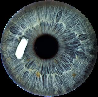 Eye Lenses HD PNG Images Free Download.