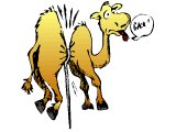Camel Through Eye Of Needle Clipart.