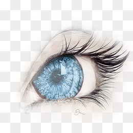 Eye, Eye, Eyelash, Blue Eyes PNG And PSD #50859.