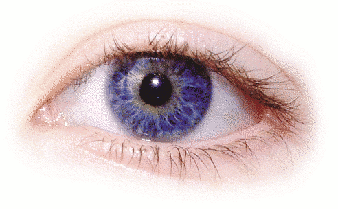 amanda eye right.