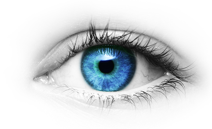 Ophthalmology PNG Images.