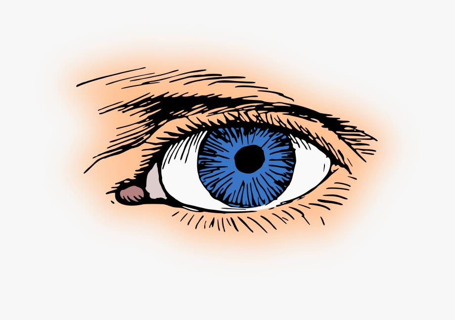 Blue Eye Vector Clipart Image.