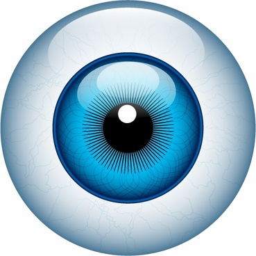 Eyeball png free vector download (61,041 Free vector) for commercial.