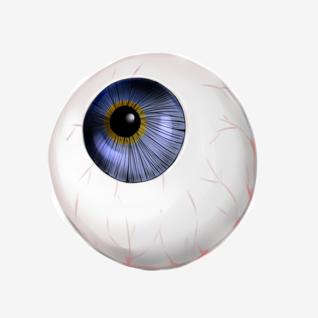 Human Organ Eyeball Illustration, Human Organ Eyeball, Blue Eyeball.