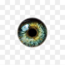 Eyeballs, Eye, Eyeball, Eye Material PNG #42613.