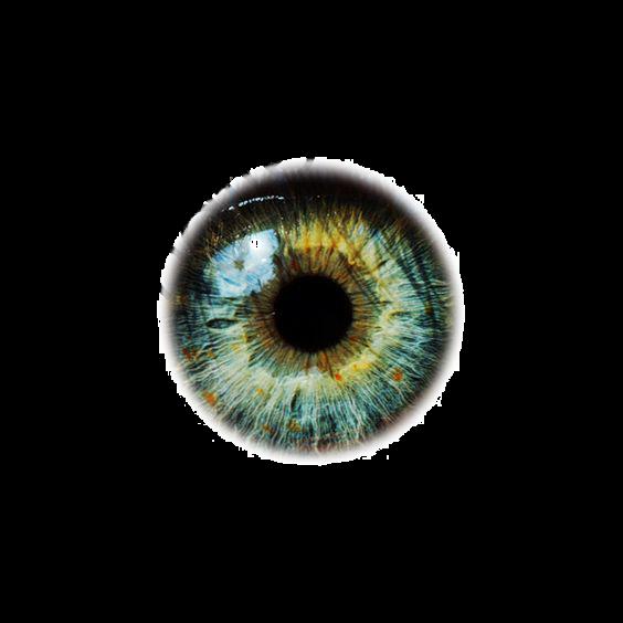 Eyeballs, Eye, Eyeball, Eye Material PNG Transparent Image and.