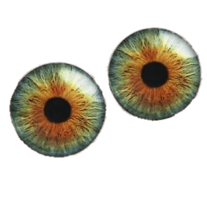 Pair Of Colourful Eyeballs transparent PNG.