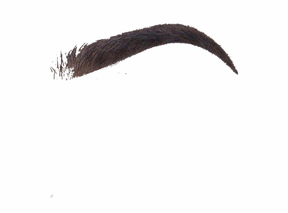 Eyebrow Texture Png.