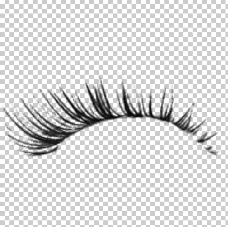 Sticker Avatar Eyelash Extensions PNG, Clipart, 3d Computer Graphics.
