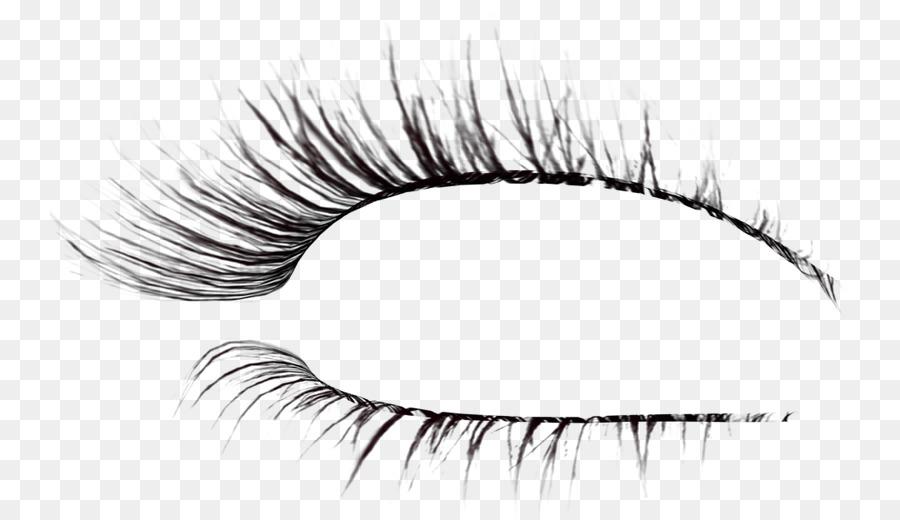 Download Free png Eyelash extensions Brush Drawing eyelash png.