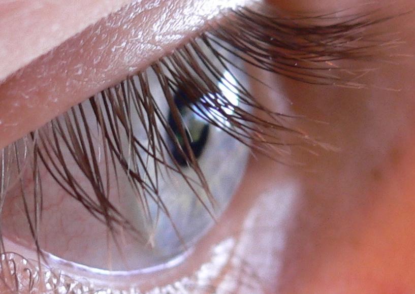 Eyelash.