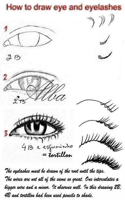25+ best ideas about Eyelashes Drawing on Pinterest.