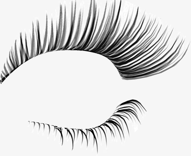 Curl Lashes, Curl, Pretty, Eyelash PNG Transparent Clipart.