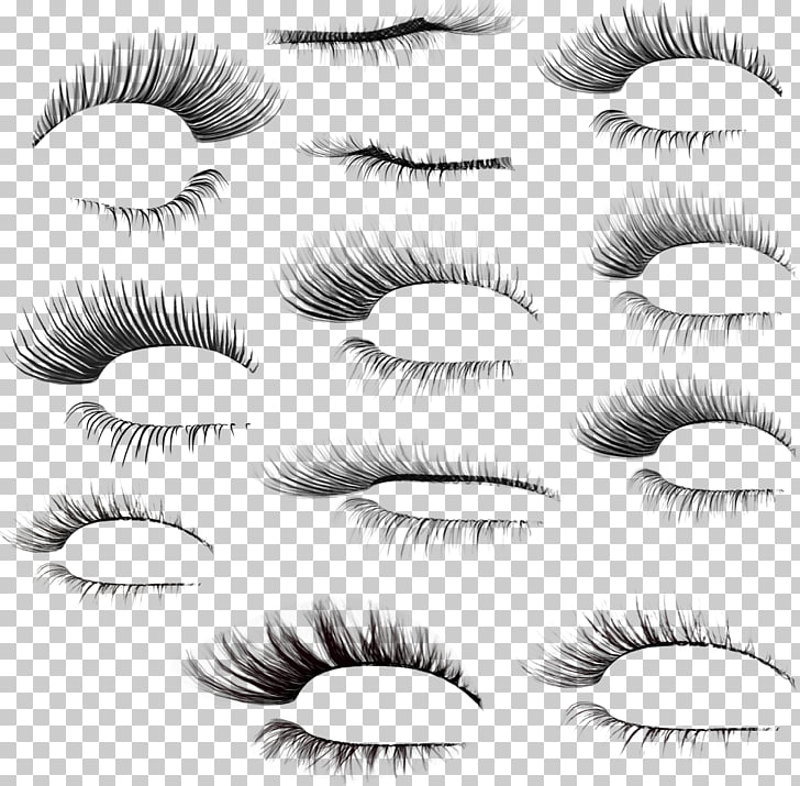 Eyelash Brush, eyebrows, women\'s false lashes lot PNG.