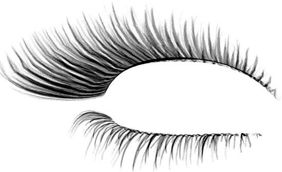 Eyelash photoshop template designs.