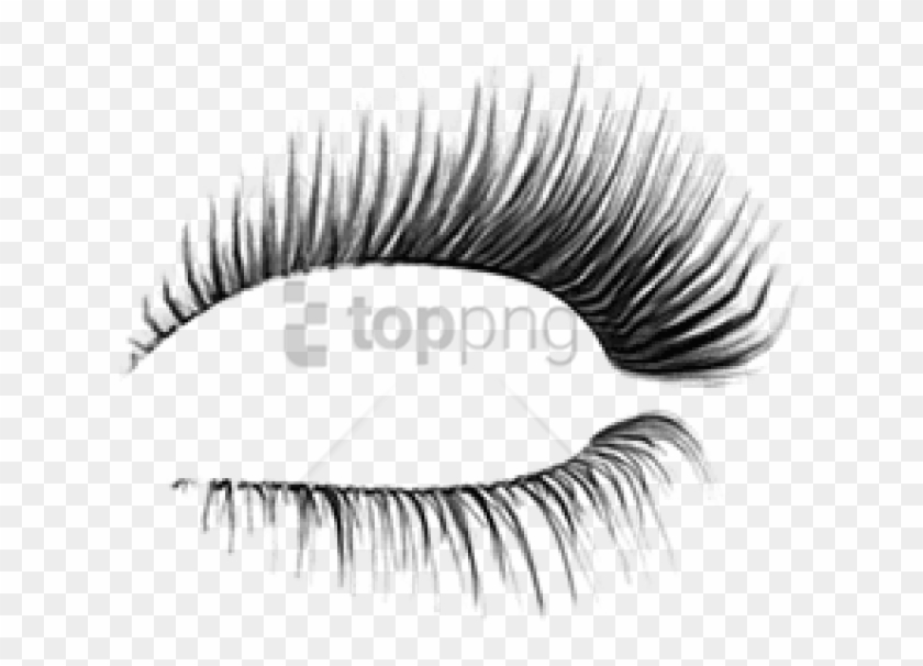 Free Png Download Classis Eyelash Png Images Background.