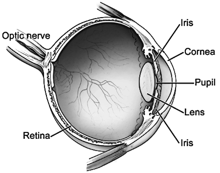 eye diagram.