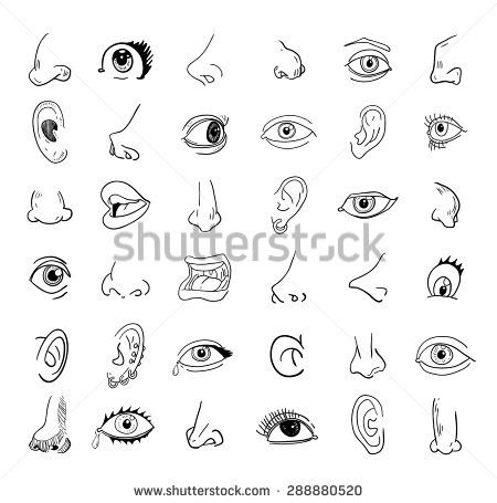 Eyes Nose And A Mouth Clipart Clipground