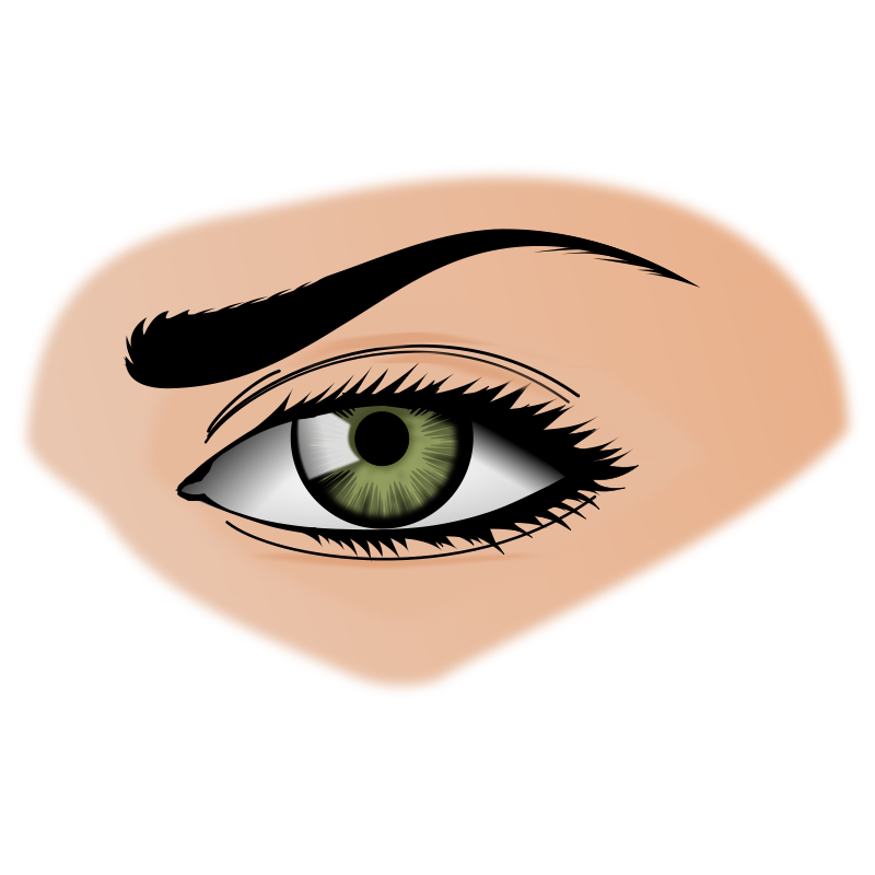 Eyes On The Nose Clip Art Download.