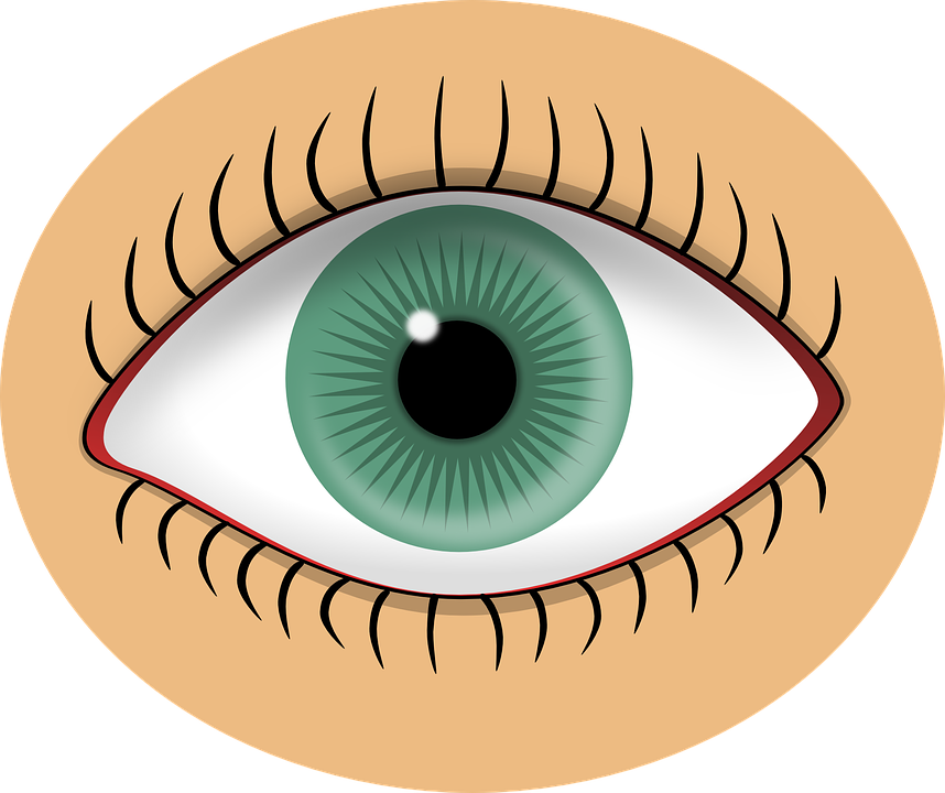 Free vector graphic: Eye, Green, Pupil, Human, Sight.