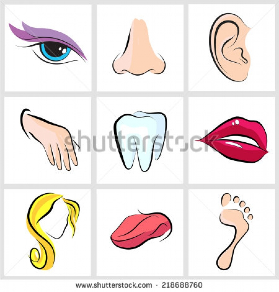 eyes ears nose clipart eyes ears nose clipart set icons with flat.