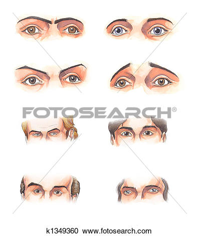Stock Illustrations of Body parts: eyes k1349360.