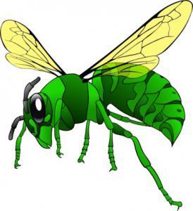 Bees Clip Art Download.