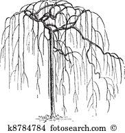 Faboideae Clipart Vector Graphics. 15 faboideae EPS clip art.