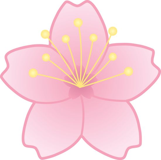 Quince blossom clipart #5