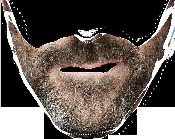 Designer beard transparent background.