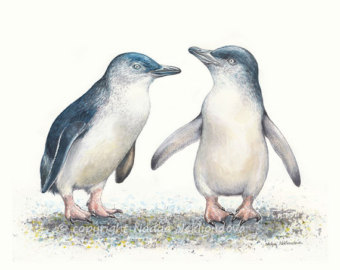 Fairy penguin clipart #16