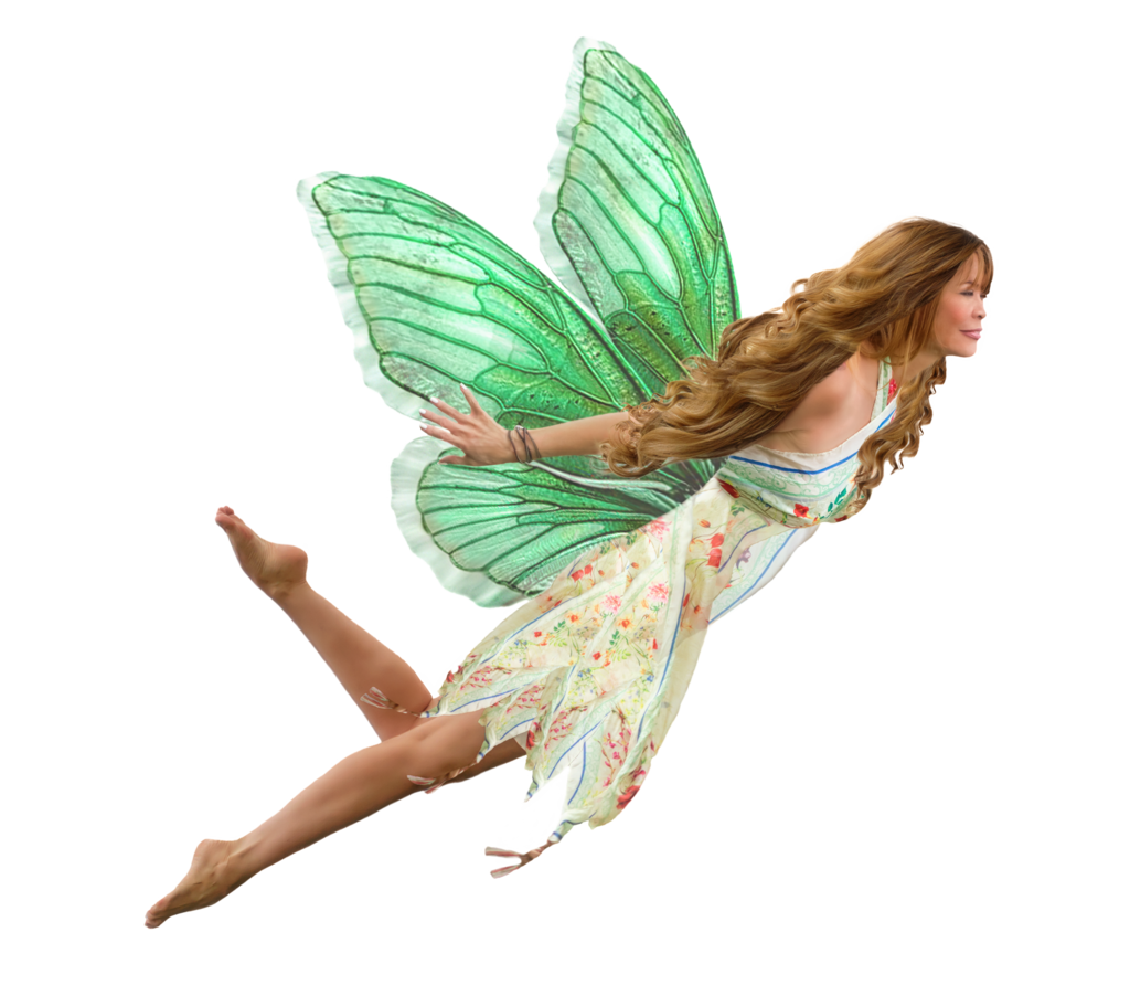 Download Fairy PNG File.